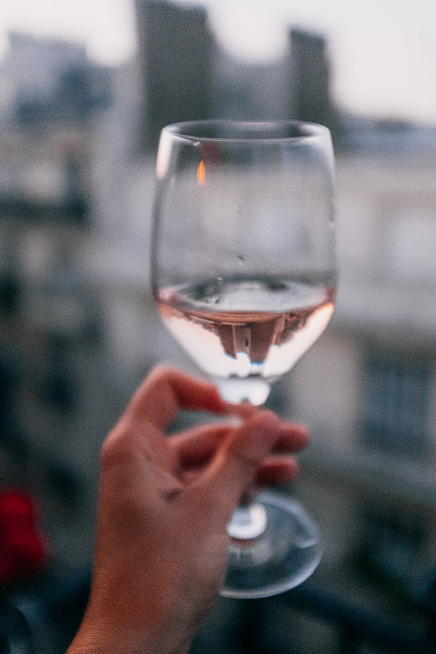 close up photo of person holding wine glass